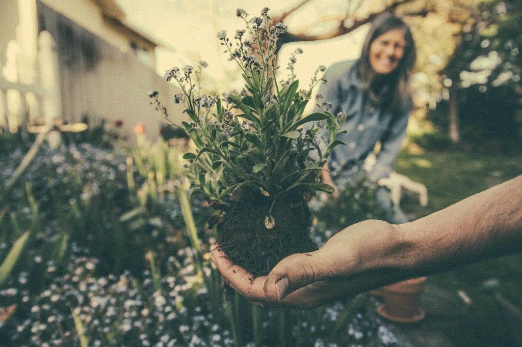 Pourquoi faire ses travaux de jardinage soi-même ?